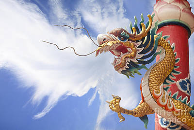 Golden Dragon With Cloud Background Original by Anek Suwannaphoom