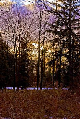Pathways Photograph - Golden Fields And Violet Sky by LeeAnn McLaneGoetz McLaneGoetzStudioLLCcom