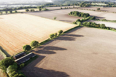 Surrey Photograph - Golden Fields by Photo by Dave Carr