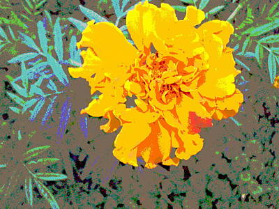 Impressionist Style Photograph - Golden Flower by Padre Art