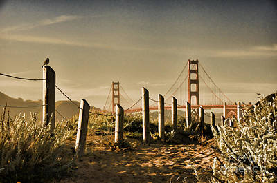 Golden Gate Bridge - 3 Art Print