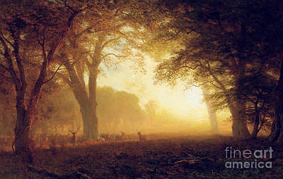 Golden Light Of California Print by Albert Bierstadt