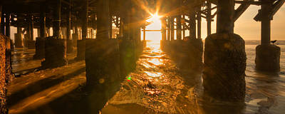 Photograph - Golden Light by Ryan Heffron