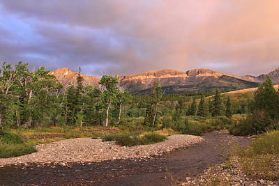 Photograph - Golden Montana Mountain by Shari Jardina