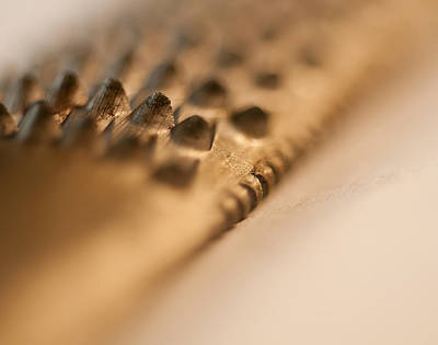 Photograph - Golden Rasp File by Wilma  Birdwell