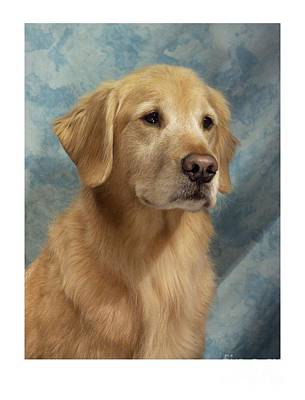 Retriever Digital Art - Golden Retriever 238 by Larry Matthews