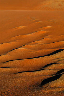 Photograph - Golden Sand by Alistair Lyne