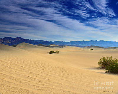 Photograph - Golden Sand Dunes Death Valley National Park by Schwartz Nature Images