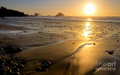 Photograph - Golden Sands by Idaho Scenic Images Linda Lantzy
