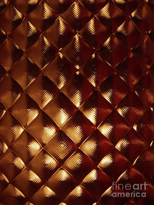 Photograph - Golden Scales by Mark Holbrook