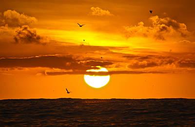 Jake Johnson Photograph - Golden Skys by Jake Johnson