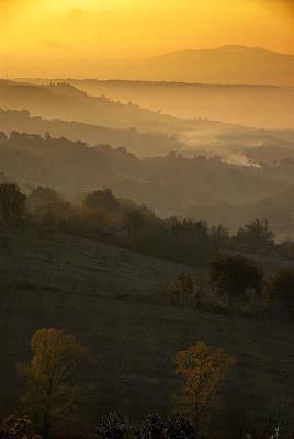 Golden Sunset  Art Print by Proyecto Imagen - Studio Creativo