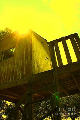 Mike Grubb Wall Art - Photograph - Golden Tree House by Michael Grubb