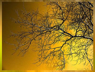 Walnut Tree Photograph - Golden Walnut Tree by Heinz G Mielke