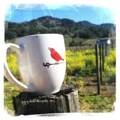 Instagood Photograph - Good Morning Napa by Penelope Moore