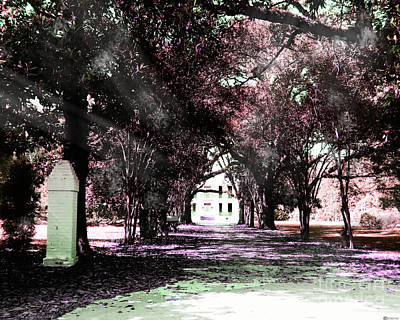 Photograph - Goodwood Plantation Circa 1852 by Lizi Beard-Ward