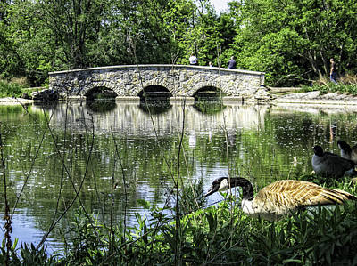 Art Print featuring the photograph Goose And Bridge At Silver Lake by Tom Gort