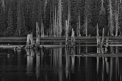 Photograph - Goose Lake Dusk by Wes and Dotty Weber