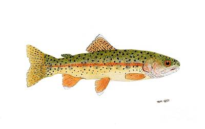 Salmon Painting - Goose Lake Redband Trout by Thom Glace