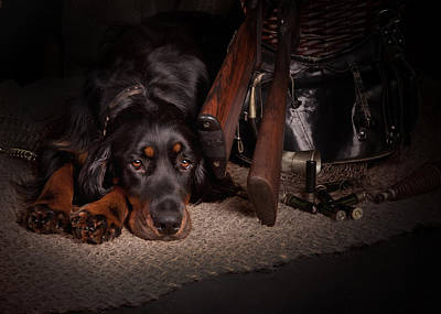 Gun Dog Painting - Gordon Setter With Two Guns... by Tanya Kozlovsky