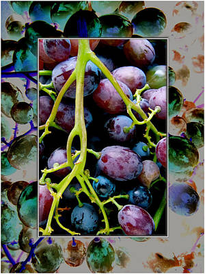 Gorgeous Bunch Of Grapes Art Print by John Maloof