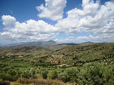 Photograph - Gorgeous Green View Of The Ancient Hilltop Mountain Range And Archeological Remains Mycenae Greece by John Shiron