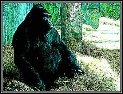 Photograph - Gorilla-2 by Anand Swaroop Manchiraju