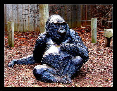 Photograph - Gorilla-9 by Anand Swaroop Manchiraju