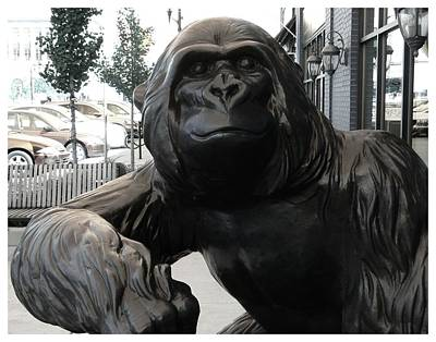 Gorilla On So Bend Street Art Print