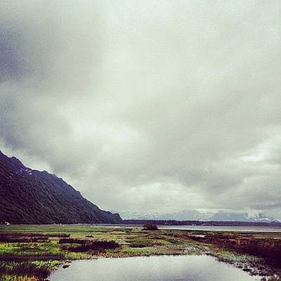 Marsh Photograph - Got Me A North Face Sweatshirt by Vanessa Wagener