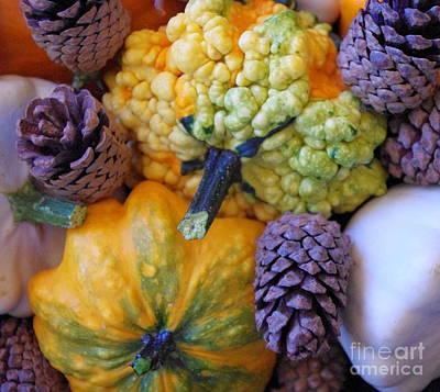 Autumn Photograph - Gourds 4 by Deniece Platt