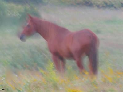 Grace In The Meadow Art Print by Debra     Vatalaro