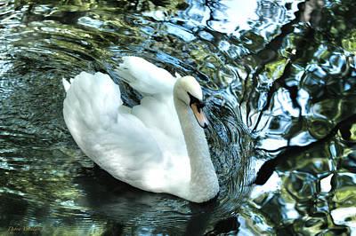 The View Of Art Mixed Media - Grace Of The Swan by Debra     Vatalaro