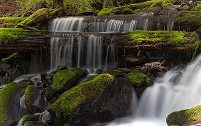 Olympic National Park Photograph - Gracefully Flowing by Mike Reid