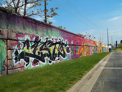 Photograph - Graffiti Lane by Anne Cameron Cutri