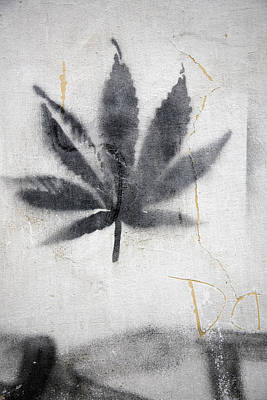 Graffiti Of A Marijuana Leaf Art Print by David Evans