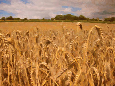 Zuid Limburg Painting - Grain Grain Grain by Nop Briex