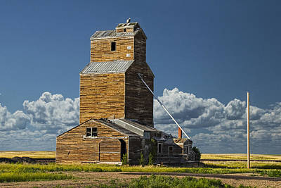 Grainery On The Prarie No.1915 Art Print by Randall Nyhof