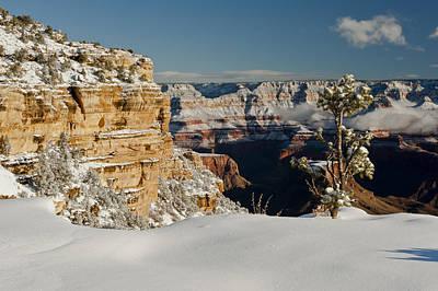 Photograph - Grand Canyon 1 by Greg Wyatt