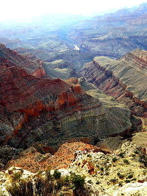 Grand Canyon 10 Art Print by Tanya  Searcy
