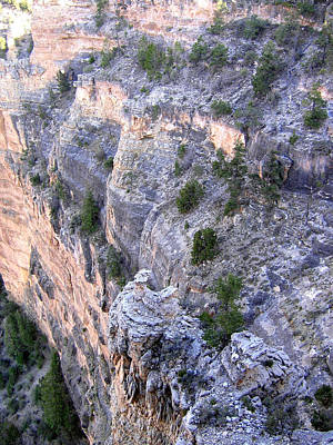 Photograph - Grand Canyon 5 by Will Borden
