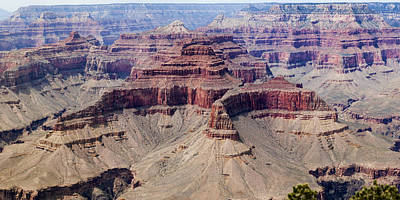 Photograph - Grand Canyon And Colorado River 4 Of 5 by Gregory Scott
