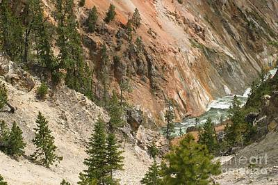 Art Print featuring the photograph Grand Canyon And Yellowstone River by Living Color Photography Lorraine Lynch