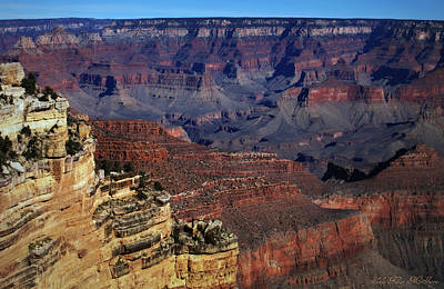 Photograph - Grand Canyon Az 2 by Sheila Kay McIntyre