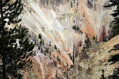 Art Print featuring the photograph Grand Canyon Colors Of Yellowstone by Living Color Photography Lorraine Lynch