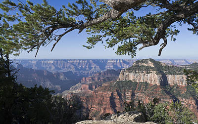 Photograph - Grand Canyon From Bright Angel Trail by Gary Eason