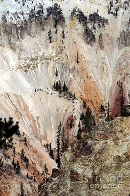Art Print featuring the photograph Grand Canyon Of Yellowstone Vertical by Living Color Photography Lorraine Lynch