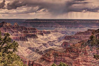 Grand Canyon Art Print by Tracy Lynn Hart