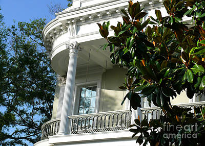 Grand House With Magnolia Tree Art Print
