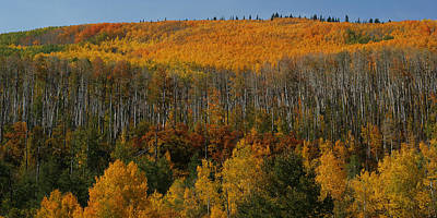 Photograph - Grand Mesa Colors by Ernie Echols